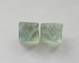 17ct Natural Fluorite Cabochon Pair   (18031425)