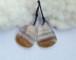 29.5ct Natural AAA Fluorite Gemstone Teardrop Earring Pair(18031710)