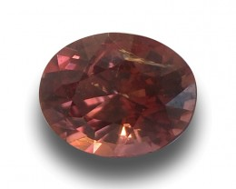 Natural Unheated Pinkish Orange Sapphire |Loose Gemstone| Sri Lank