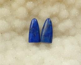 9.5ct Natural Lapis Lazuli  Cabochon(18032029)