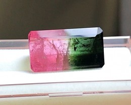 23.15 cts WATERMELON TOURMALINE GEMSTONE