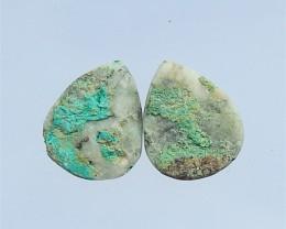 31ct Natural Chrysocolla Cabochon Pair(18032827)