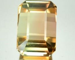 7.70 Cts Natural Light Bi-Color Tourmaline Octagon Cut Mozambique
