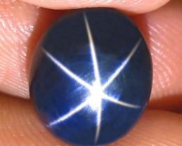 7.25 Carat Blue Star Sapphire - Gorgeous