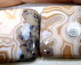 69.2CTS LACE AGATE PAIR ADG-1626