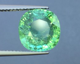 Certified 5.96 Cts Paraiba Tourmaline Attractive Higher Color ~ Mozambique