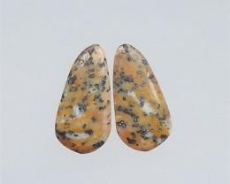 28.5ct Natural Fashion petrified wood opal Cabochon Pair(18041302)