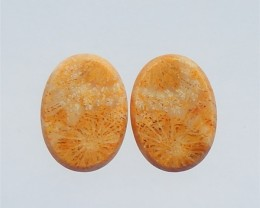 32.5ct Specialoffer Oval Bamboo Agate Cabochon Pair(18041308)