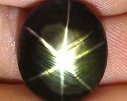 14.85 Carat Thailand Black Star Sapphire - Gorgeous