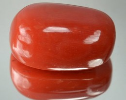 14.98 Cts Natural Italian Red Coral Cabochon ~100% UNTREATED~
