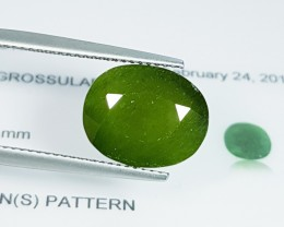 "9.30 CT ""IGI Certified"" Awesome Green Oval Cut Natural Hydrogross"