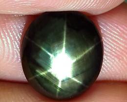 7.94 Carat Thailand Black Star Sapphire - Gorgeous