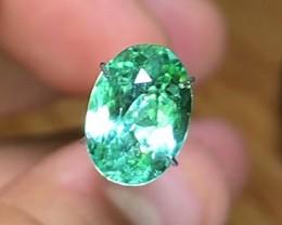 2.45 cts Electric Green Paprok Tourmaline ~ $375 ~D1