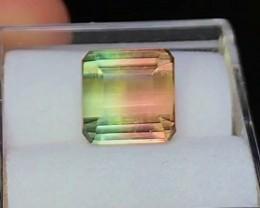 3.85 cts VVS Bicolor Tourmaline ~ Paprok Mine $500 ~D5