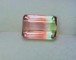 2.20 cts VVS Bicolor Tourmaline ~ Paprok Mine $295 ~ D6