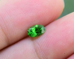Natural Tsavorite Garnet .48 Ct.  Vivid Green (1224)