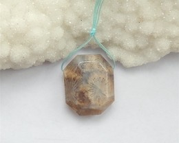 54.5ct New Design Natural Indonesian Fossil Pendant(18042013)