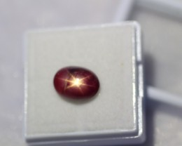 4.87Ct Natural 6 Rays Star Ruby Lot V1247