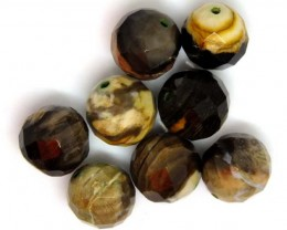 PETRIFIED WOOD BEADS, (8 PC) 63.9  CTS  NP-1197