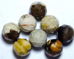 PETRIFIED WOOD BEADS, (8PC) 62.80CTS NP-1012