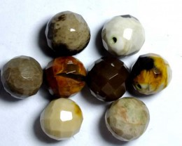 PETRIFIED WOOD BEADS, (8PC) 62.35CTS NP-1035