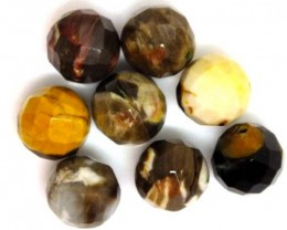PETRIFIED WOOD BEADS, (8 PC) 67 CTS  NP-1184