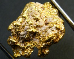 COLLECTORS QUARTZ  GOLD NUGGET 8.9  GRAMS  LGN 322