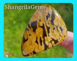 57mm Peanut wood Jasper free form petrified wood cabochon 98ct