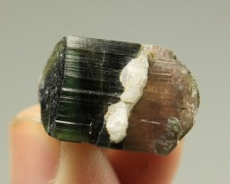 Natural Tri color Tourmaline Double Terminated Crystal with a baby small Cr