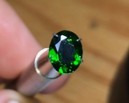 1.35 cts Chrome Diopside ~ Russian ~ VVS Rich Green ~D23