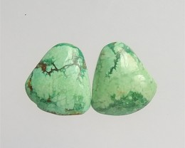 25.5ct Hot Sale Nugget Turquoise Cabochon Pair(18042403)