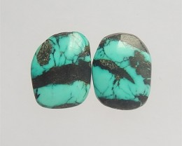 15ct Nugget Beautiful Turquoise Cabochon Pair(18042404)
