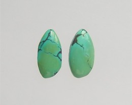 12.5ct Nugget Beautiful Turquoise Cabochon Pair(18042409)