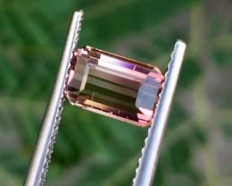 1.70Cts Beautiful Bi Color Tourmaline