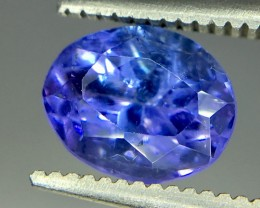 1.60 Crt Tanzanite Faceted Gemstone (R 172)