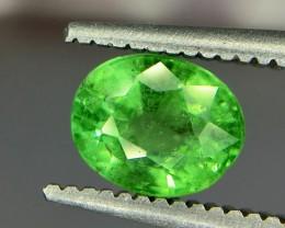 1.10 Crt Tsavorite Faceted Gemstone (R 172)