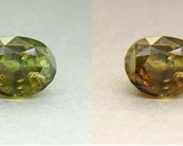 BIG Untreated Alexandrite 6.02 Ct. Ceylon Olive Green (00520)