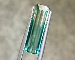 4.05Cts Exquisite Bi Colour Tourmaline