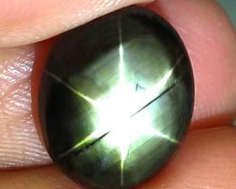 5.37 Carat Thailand Black Star Sapphire - Gorgeous
