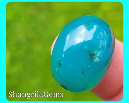 19.5mm Gem Silica Chrysocolla from Peru  with Malachite and Cuprite