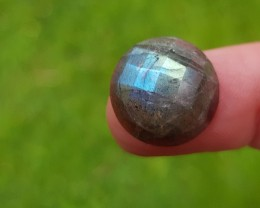 15mm Labradorite Checker cut gemstone cabochon 15mm by 7mm deep
