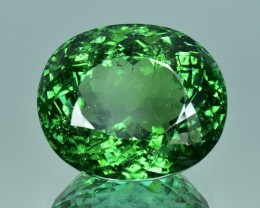 38.24 Cts Wonderful Excellent Natural Top Green Tourmaline