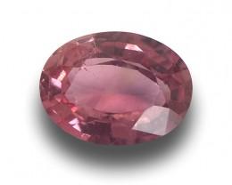 Natural Pink Sapphire |Loose Gemstone| Sri Lanka - New