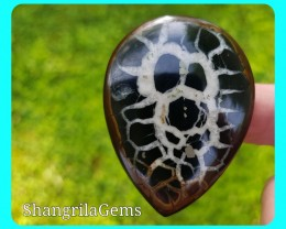 52mm Septaria pyrite Agate cabochon or Septarian