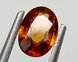 1.05 Cts ZIRCON  Best Grade Gemstones JI 49