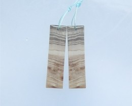 39ct Hot Sale Natural Plant Fossil Earring Pair(18052110)