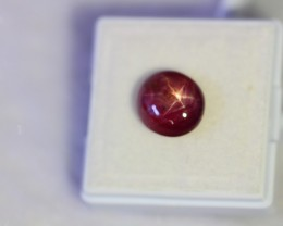 5.96Ct Natural 6 Rays Star Ruby Lot V1487