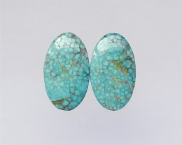 32.5ct Hot Sale Turquoise Oval Cabochon Pair(18052301)
