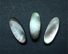 15.5ct 3Pcs Natural Oval Abalone Shell Cabochon(18052805)