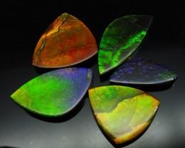 Ammolite 74.07 cts 5 stones Wholesale Lot